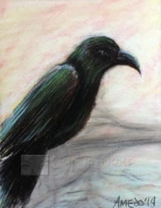 Crow-Watermarked